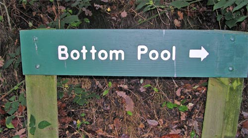 Bottom Pool - a funny sign on Forestry Commission land in the UK