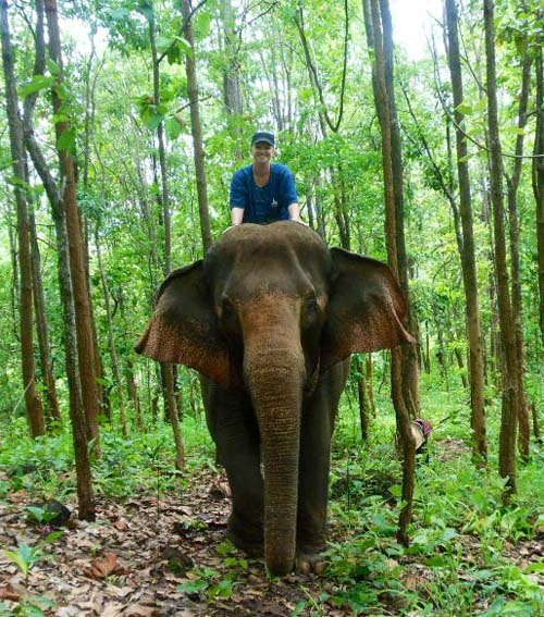 Sally on an elephant in a sanctuary in Thailand