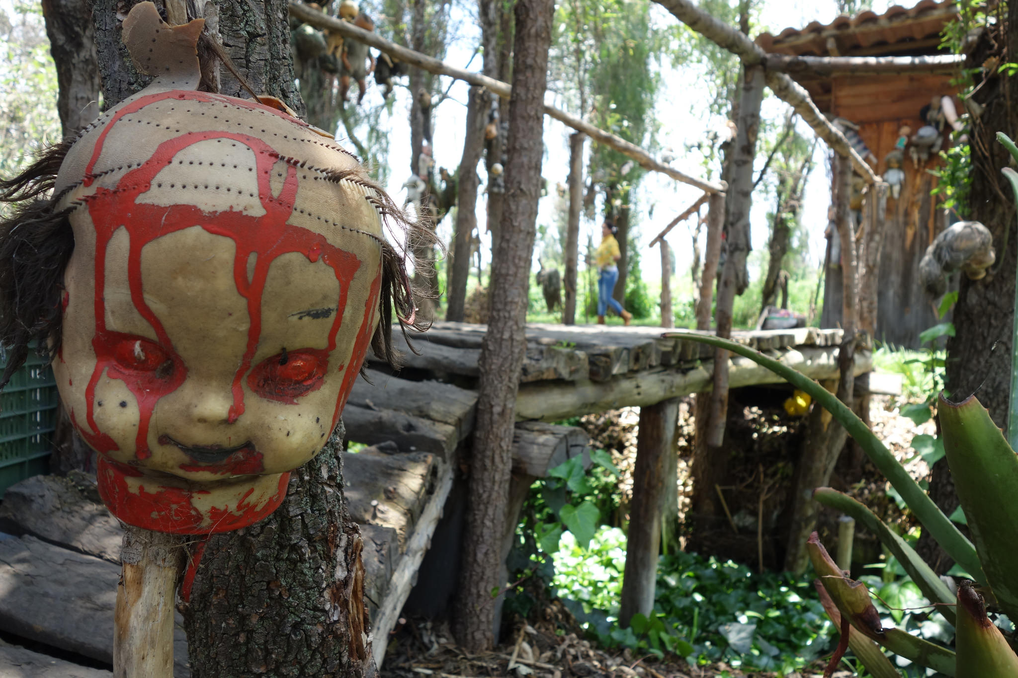 Isla de las Munecas (Island of the Dolls), Mexico City, Mexico