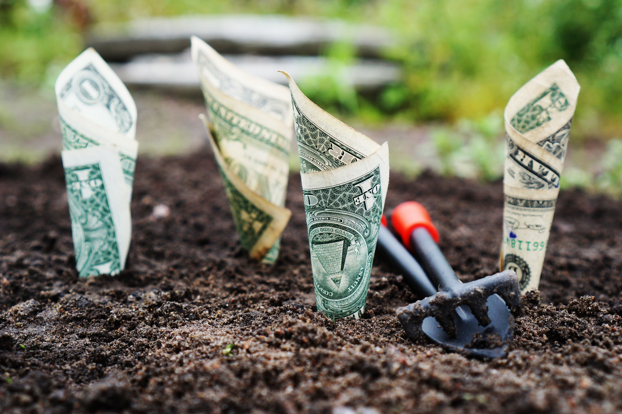 Money doesn't grow on trees, but it does grow! Spend your money on investing